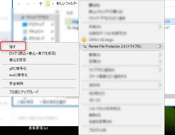 Renee File Protectorの隠すコマンド選択画面